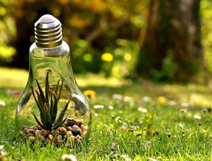 7 idées pour valoriser son engagement éco-responsable