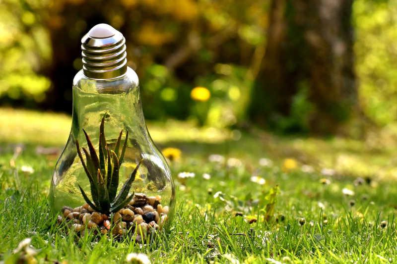 valoriser eco-reponsabilité entreprise