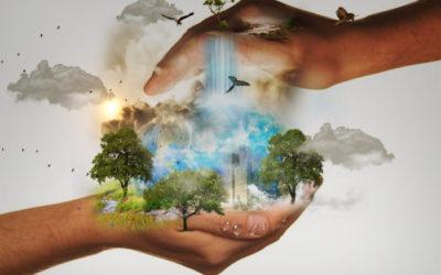 La puissance du contact avec la nature