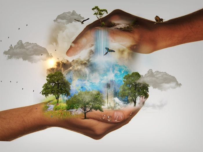 reconnexion à la nature